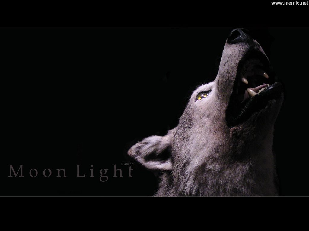 darklove-46