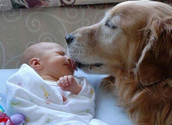 animali-e-bambini-vegamami-altervista-org-11