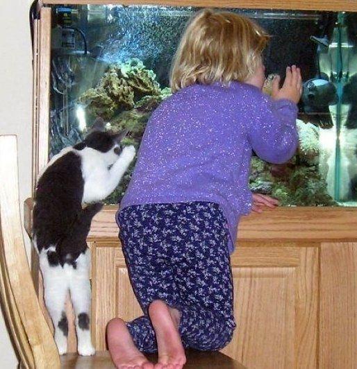 animali-e-bambini-vegamami-altervista-org-15