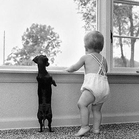 animali-e-bambini-vegamami-altervista-org-3