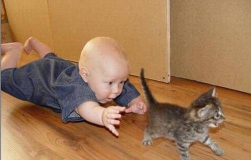 animali-e-bambini-vegamami-altervista-org-30