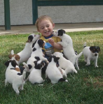 animali-e-bambini-vegamami-altervista-org-35