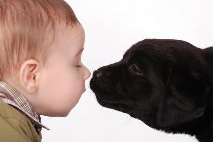 animali-e-bambini-vegamami-altervista-org-4