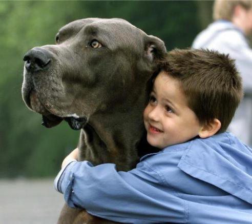 animali-e-bambini-vegamami-altervista-org-40