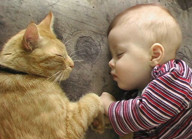 animali-e-bambini-vegamami-altervista-org-46