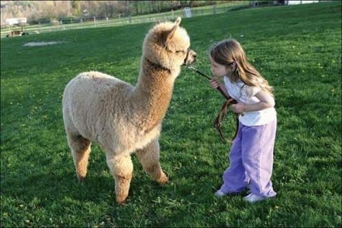 animali-e-bambini-vegamami-altervista-org-5