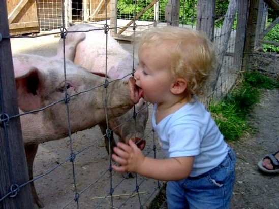 animali-e-bambini-vegamami-altervista-org-51