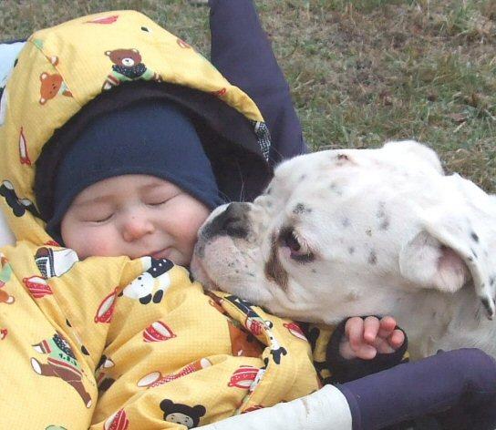 animali-e-bambini-vegamami-altervista-org-59