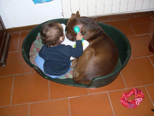 animali-e-bambini-vegamami-altervista-org-61