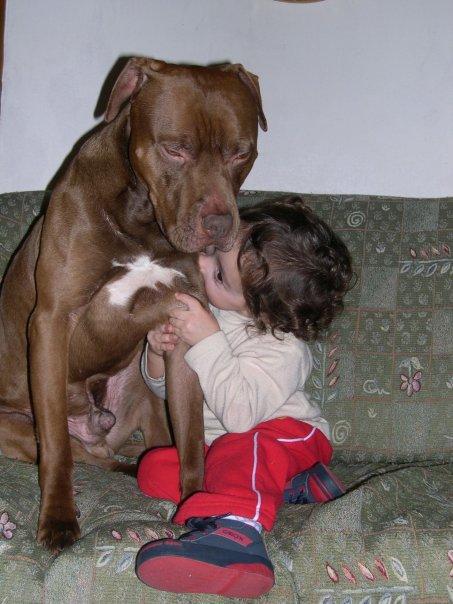 animali-e-bambini-vegamami-altervista-org-62