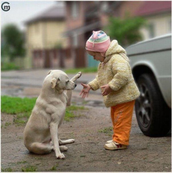 animali-e-bambini-vegamami-altervista-org-64