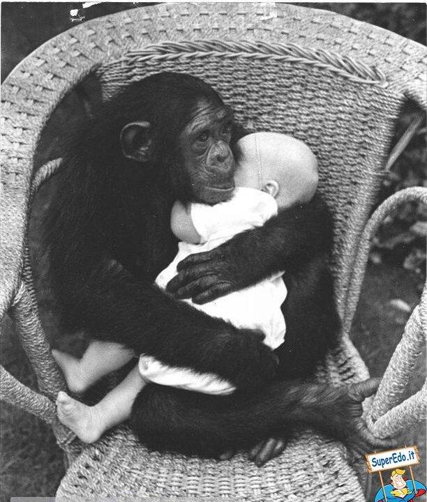 animali-e-bambini-vegamami-altervista-org-71