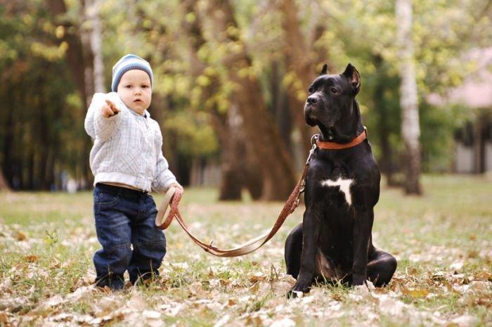 animali-e-bambini-vegamami-altervista-org-74