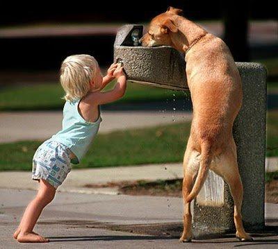 animali-e-bambini-vegamami-altervista-org-76