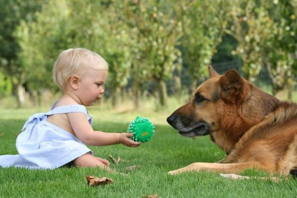 animali-e-bambini-vegamami-altervista-org-9