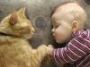 Gli animali e i loro bambini