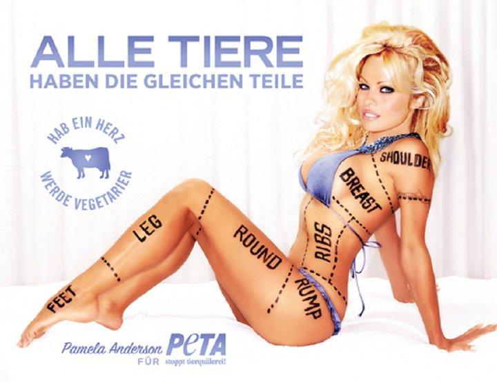 peta-gallery-76
