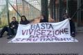 Il caso del San Raffaele: la storia e la protesta.