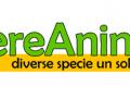 Corso di cucina vegan - Mezzano (RA), 1-8-15 giugno.