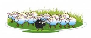 pecore; fonte: http://us.123rf.com