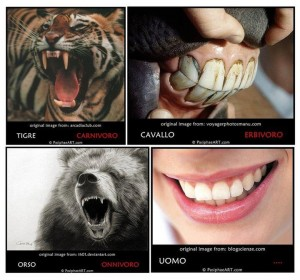 Dentature a confronto