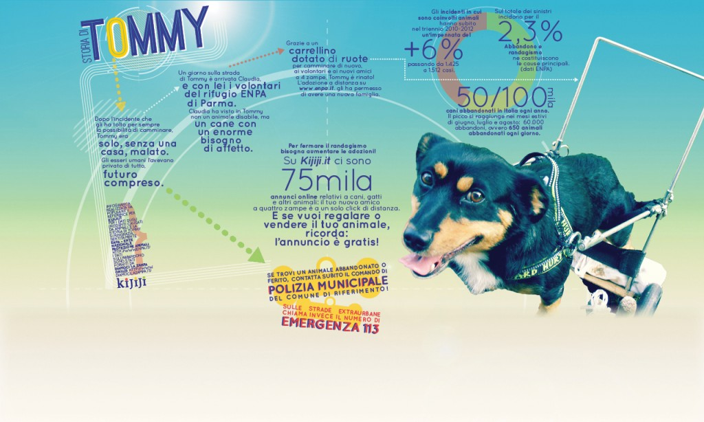 infografica-tommy