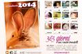 È arrivato il Calendario 2014 AAE Onlus!